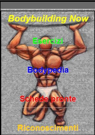 Bodybuilding Now