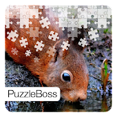 Squirrel Jigsaw Puzzles
