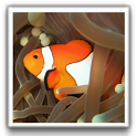 Best Fish Wallpapers icon