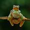 ZXA_2580.jpg
