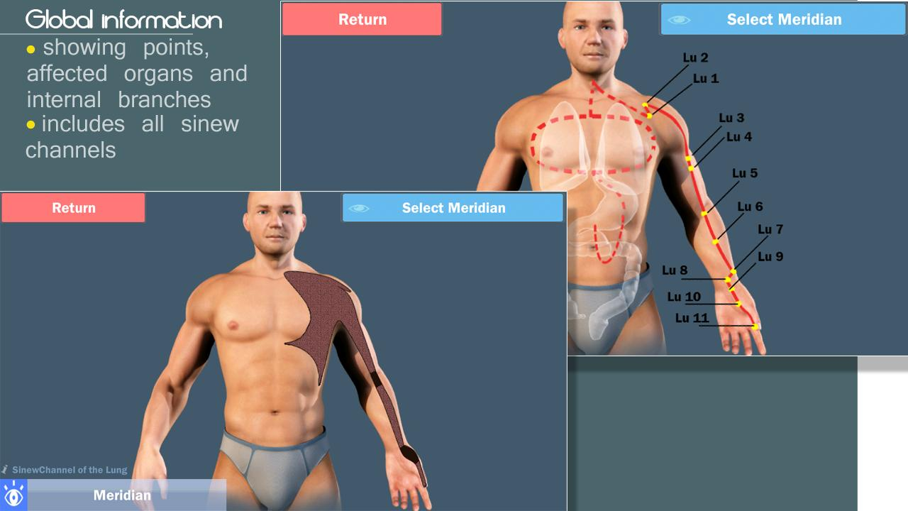 Easy Acupuncture 3D -LITE- screenshot