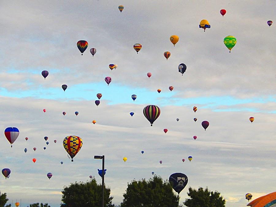 Many balloon slowly descending. by Dan Dusek - Transportation Other ( fiesta, artistic objects, transportation, balloons, hotair ballons,  )