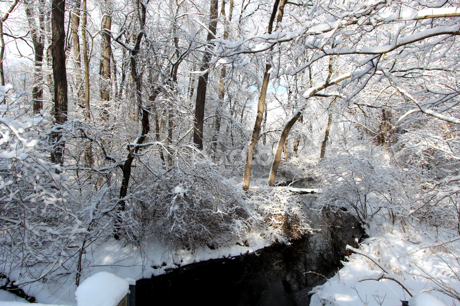 by Dipali S - Landscapes Weather ( winter, cold, season, snow, creek, climate, lake snow effect, temperature,  )