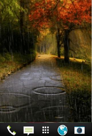 Autumn rain LIVE