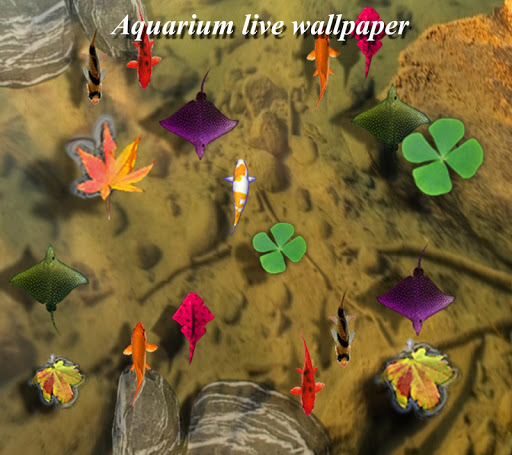 【免費娛樂App】Aquarium 3D Live wallpaper-APP點子