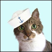 Magic Cat Sailor