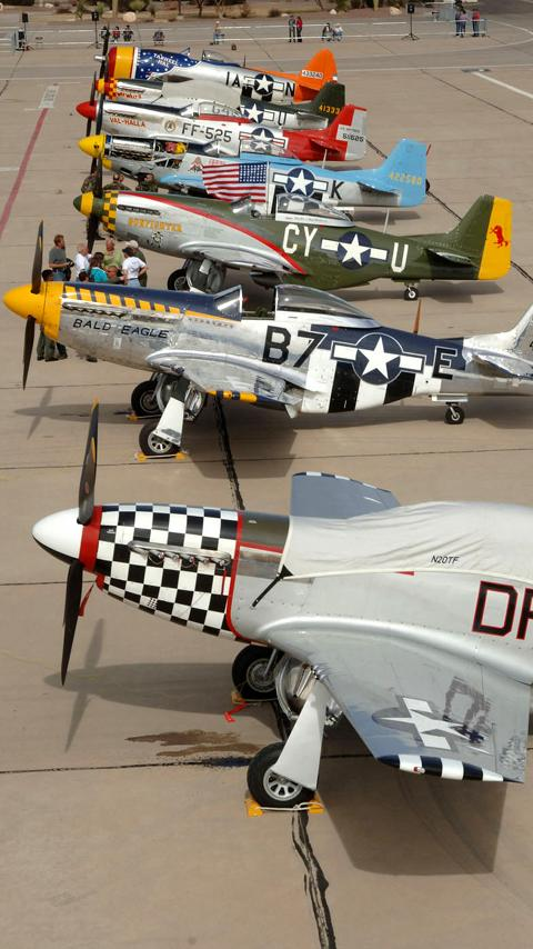Warbirds: P-51 Mustang FREE- screenshot
