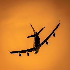 Golden thunder by Graeme Wilson - Transportation Airplanes ( jetliner, b747, airplane, boeing, jet )