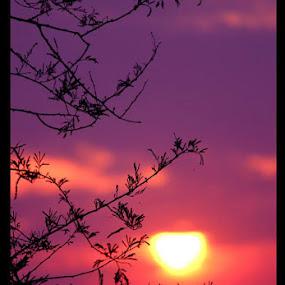 and slowly the sun went down by Jayanto Dey - Landscapes Sunsets & Sunrises ( good night, sunrises, sunset, good morning, sunlight )