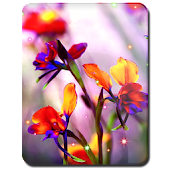 Little Summer Flowers HD LWP