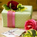 Gift Wrapping Ideas icon