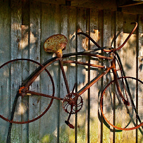 Retired by Joan Rankin Hayes - Transportation Bicycles ( old bicycles, vintage, yard art, barn art, bicycle,  )