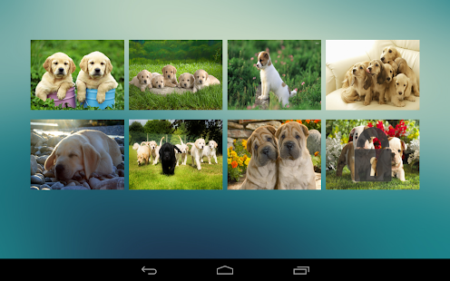 Jigsaw Puzzle Dogs Screenshot 8