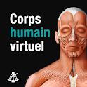 Corps humain virtuel icon
