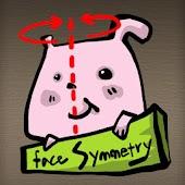Face Symmetry (얼굴 대칭)