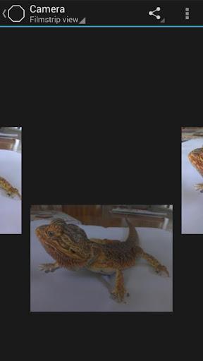 الكاميرا Snap Camera v4.0.22,بوابة 2013 ld4R0WW7Xxtos11GHim3
