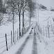 La Tempestad de Nieve - Audio