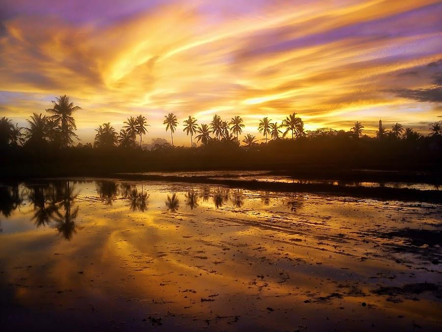 Refleksi Tak Sempurna by Randi Pratama M - Instagram & Mobile Android ( field, reflection, sunset, indonesia, golden hour )