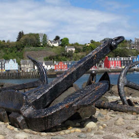 Tobermory Scotland by Bonnie Lea - Novices Only Objects & Still Life