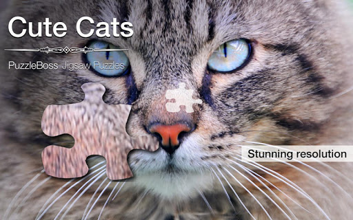 【免費解謎App】Cute Cats Jigsaw Puzzles-APP點子