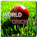 World Cricket Game icon