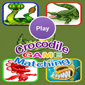 Crocodile Matching Games