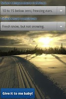 Screenshot of Perfect Skiing