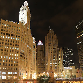 Wrigley and Tribune Buildings At Night by VAM Photography - Buildings & Architecture Office Buildings & Hotels ( tribune, night, chicago, architecture, travel, wrigley,  )