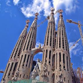 La Sagrada Familia by Roxana McRoberts - Buildings & Architecture Places of Worship