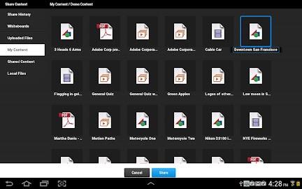 Adobe Connect Screenshot 9