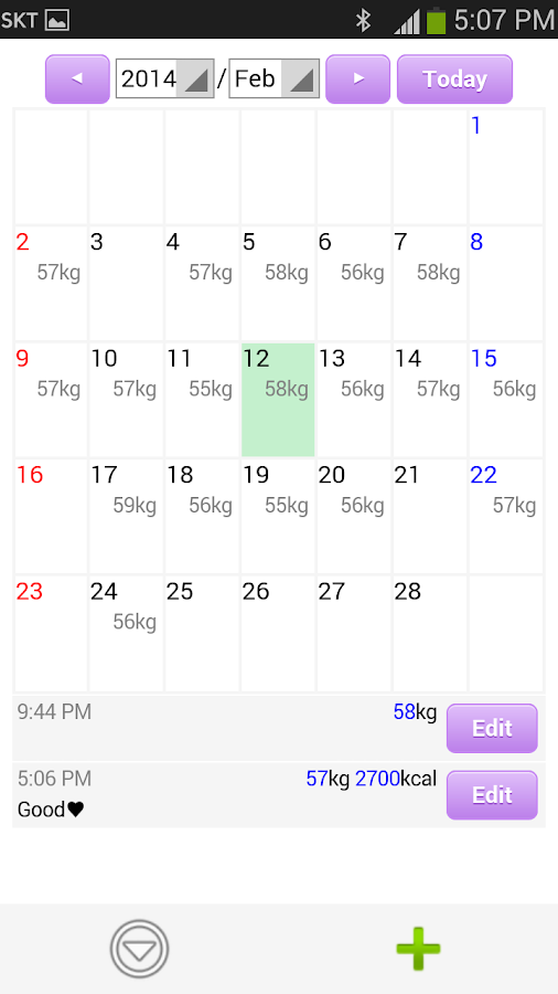 Diet Diary- screenshot