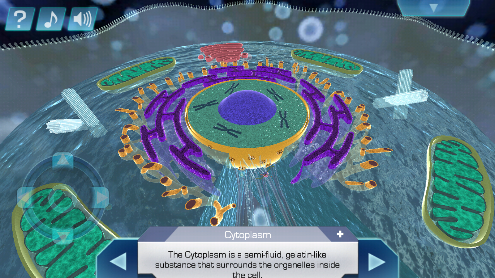 Cell World- screenshot