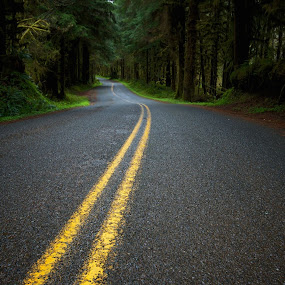 'The Road I'm On'. This is from last year's trip up to Olympic Nat'l Park. by Michael White - Transportation Roads
