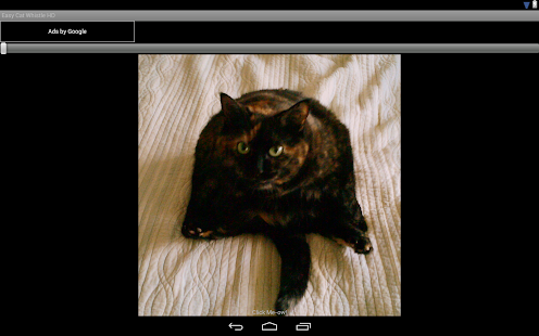 Easy Cat Whistle HD- screenshot thumbnail