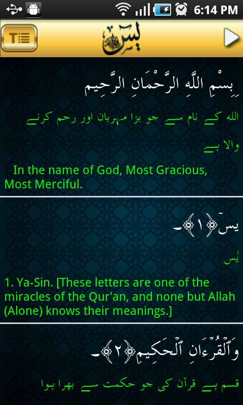 Surah YaSin Audio Urdu - screenshot