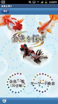 金魚図鑑ベスト100のおすすめ画像2