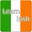 Learn Irish Premium logo