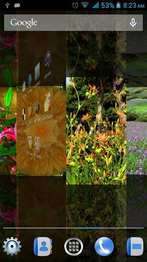 鮮花動態壁紙