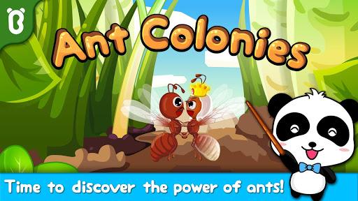Ant Colonies - Babybus