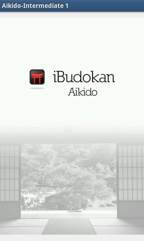 Aikido ALL - screenshot