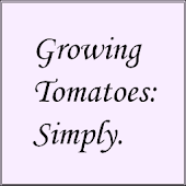 Growing Tomatoes: Simply.