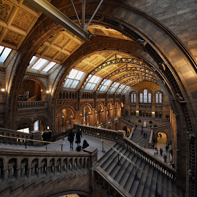 Wide at NHM ii by Almas Bavcic - Buildings & Architecture Other Interior