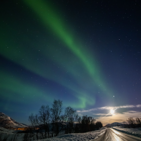 King of the road by Geir Hammer - City,  Street & Park  Street Scenes ( sky, tree, snow, aurora, northern light, road )