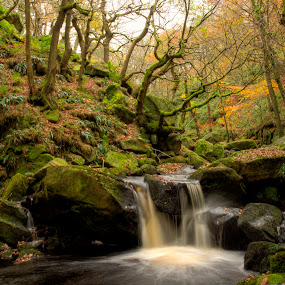 Padley Gorge autumn by Ray Heath - Landscapes Waterscapes ( colour, time, 1 seasons, autumn, locations, moss, padley gorge, image, streams, type, derbyshire, , relax, tranquil, relaxing, tranquility )