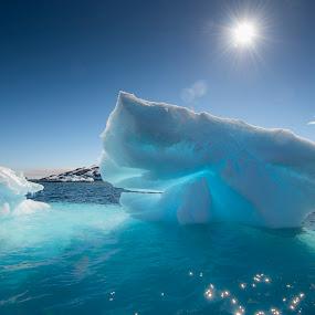 by Mark Anolak - Landscapes Waterscapes ( iceberg, antarctica, useful island, landscape )