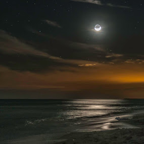 Moonlight over Dauphin Island, Al by Barb Hauxwell - Landscapes Beaches ( water, sand, moon, dauphin island, ocean, alabama, crescent moon, beach, moonlight )
