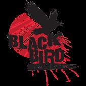 Black Bird Radio