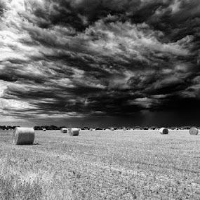 by Dwayne Flight - Black & White Landscapes (  )