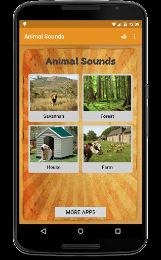 동물 소리