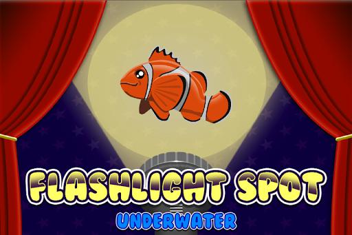 Flashlight Underwater Puzzles